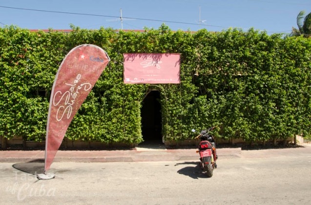 Salsa Suárezrestaurant in Varadero